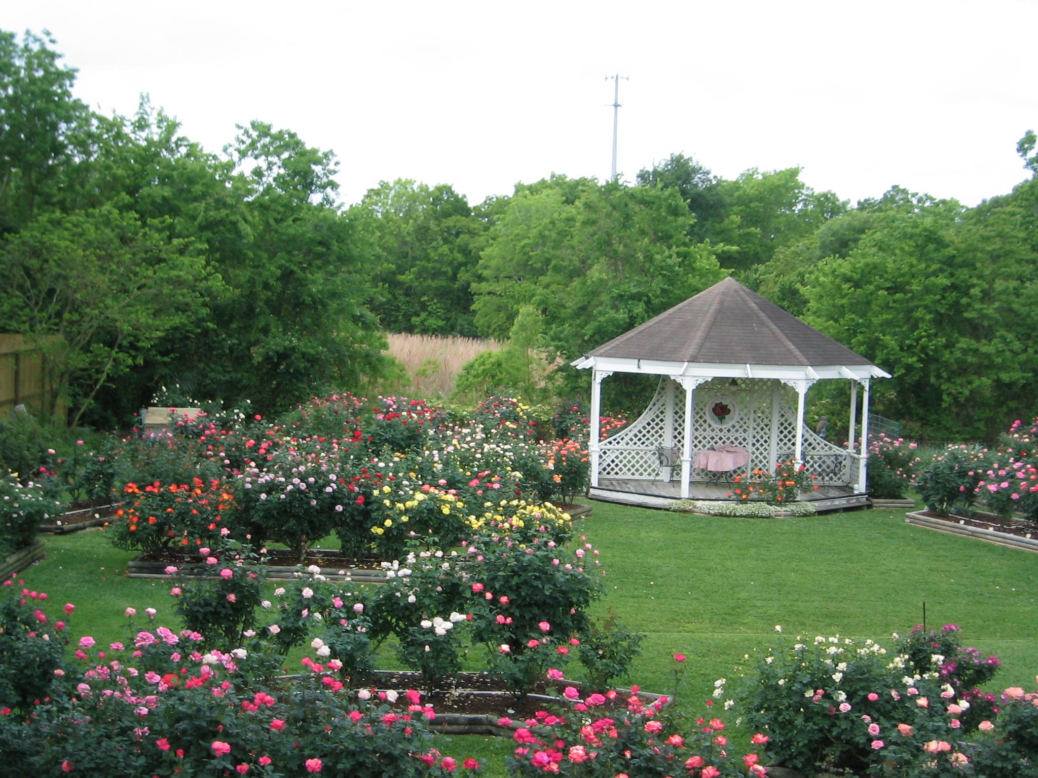 Rose Garden Shreveport Garden Ftempo